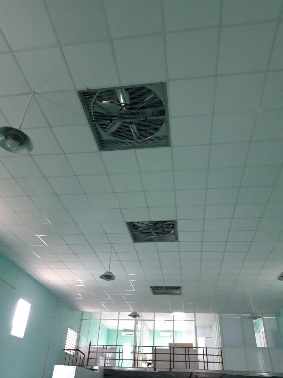 Quạt thông trần nhà xưởng